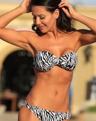 Zebra Classic Bikini